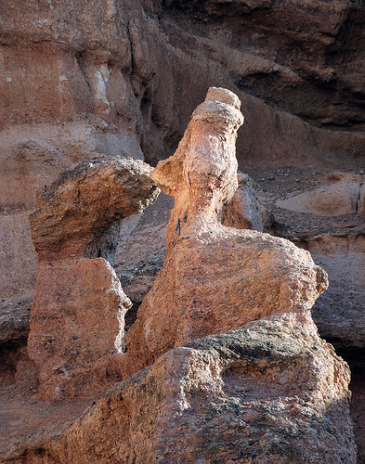 Donald Duck of the Charyn Canyon