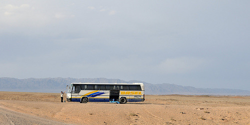 Charyn Bus Tours