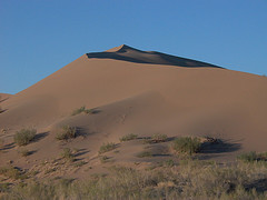 Traces of Nightlife on Singing Sand Dunes