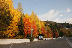 Autumn Colors on the road to Medeo